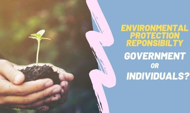 Individuals or governments responsibility on environment protection IELTS Writing Task 2 – 24/08/2019