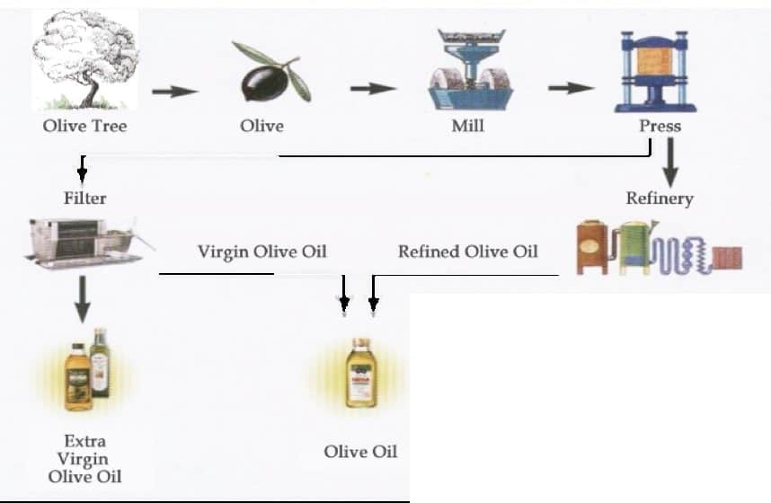 Process Of Making Olive Oil